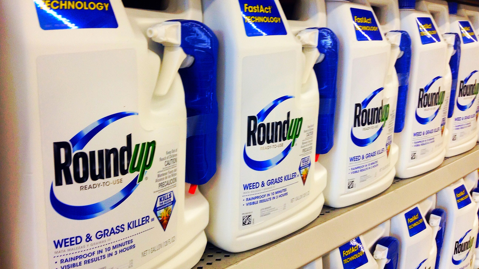 <h4>Cause For Serious Concern</h4><p>According to the cancer agency at the World Health Organization, glyphosate—the main chemical ingredient in Roundup—can cause cancer at high levels of exposure.</p><em>Mike Mozart via flickr / CC-BY-2.0</em>